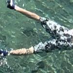 サメより怖いダツの攻撃を収めた動画